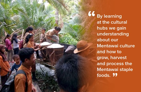 By learning at the cultural hubs we gain understanding about our Mentawai culture and how to grow, harvest and process the Mentawai staple foods.